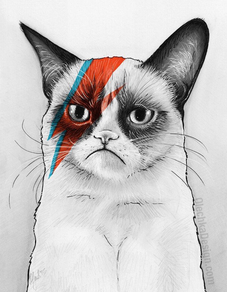25 asombrosos dibujos de gatos – Arte Feed