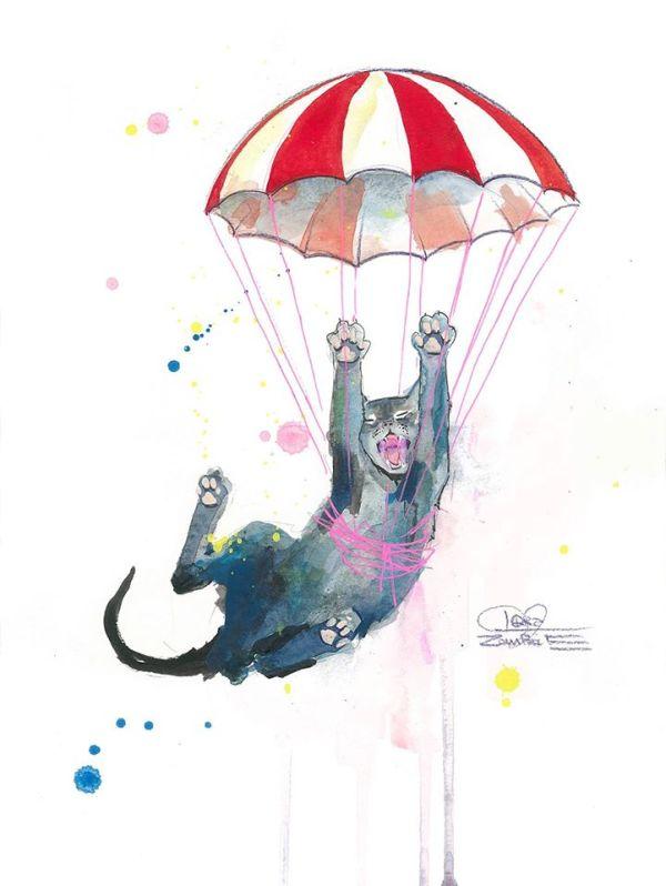 parachutecat