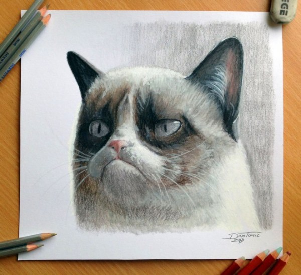 17-cat-color-pencil-drawing-atomiccircus.preview