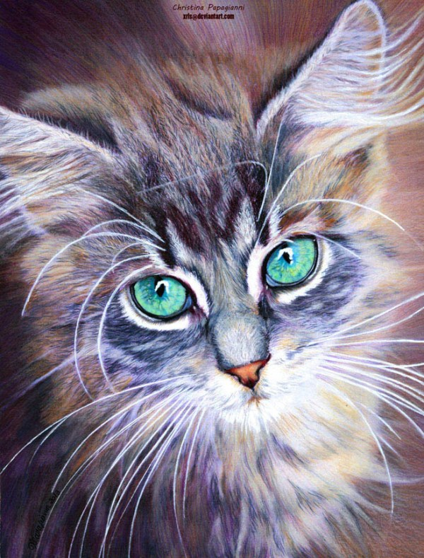 20-cat-hyper-realistic-color-pencil-drawing-by-christina-papagianni