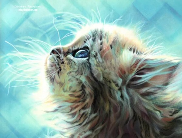 25-cat-hyper-realistic-color-pencil-drawing-by-christina-papagianni.preview
