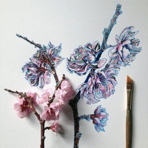 dibujos de flores  6