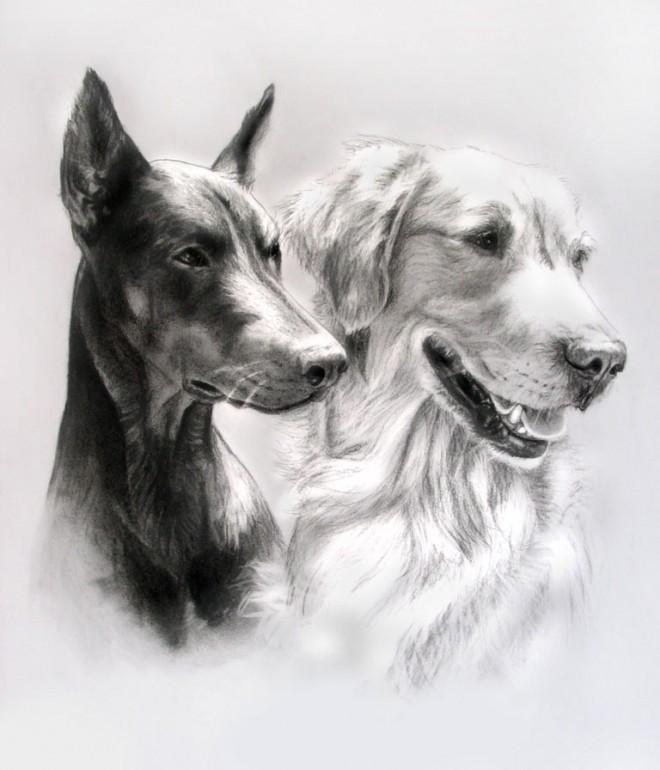 15 dibujos de perros que de seguro amar s arte feed - Blanco y negro paint ...