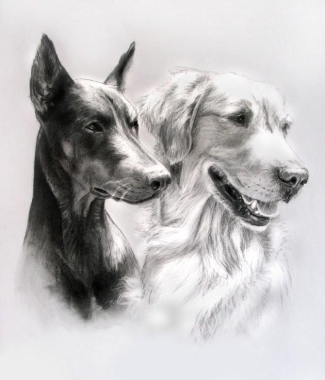 DIbujo perro blanco y negro 3