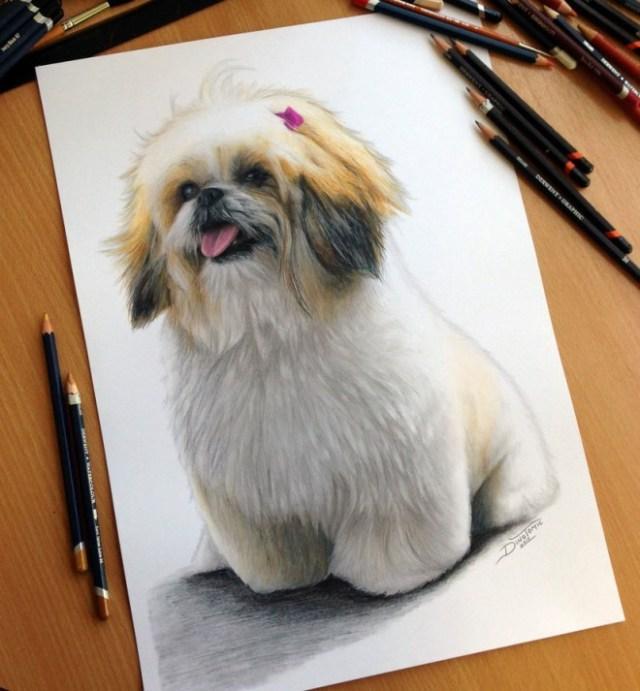 DIbujo perro hiperrealista colores 3