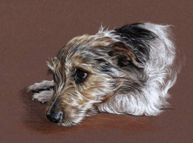 DIbujo perro realistas colores 3