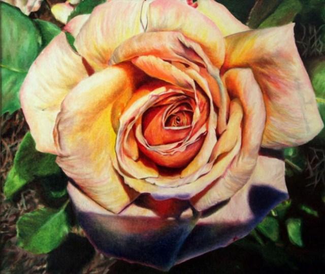 dibujo de flor rosas realista 2
