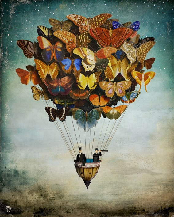 globos mariposas