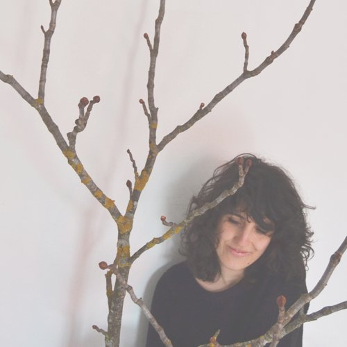 Licia Baldini - Artista