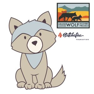 LAVORETTI su lupo WOLFIE – Gran Canyon Wolf Recovery Project