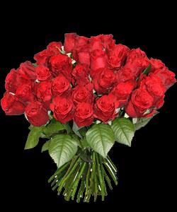 Ce modeste bouquet pour toi