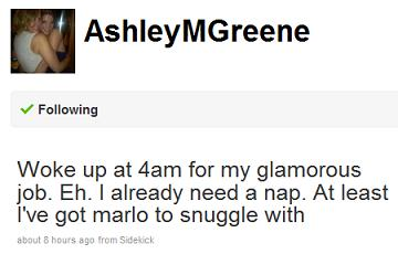ashley greene twitter