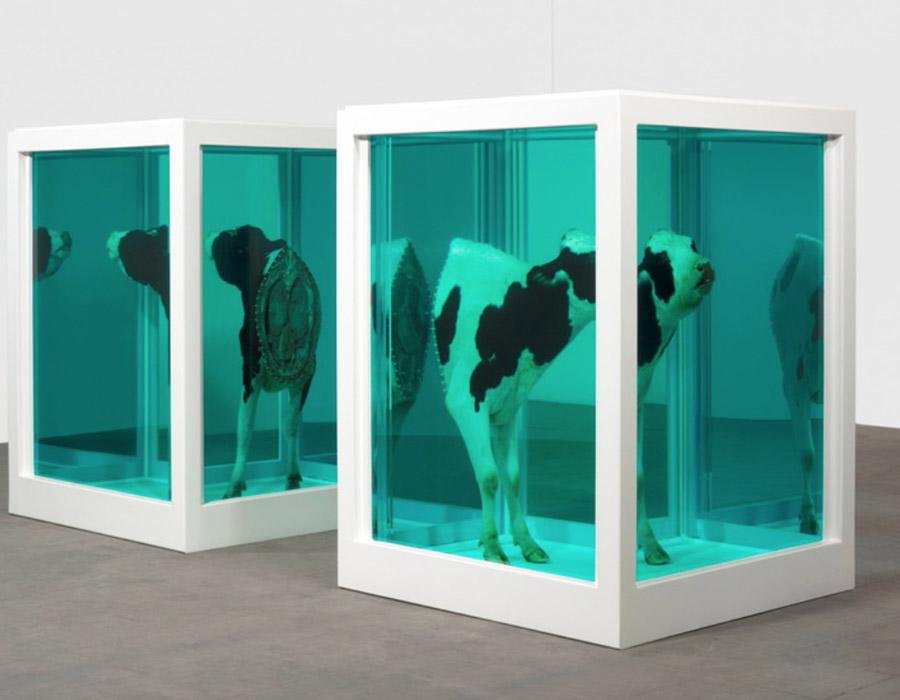 Arte Conceitual: todos falam, mas qual o seu real significado?