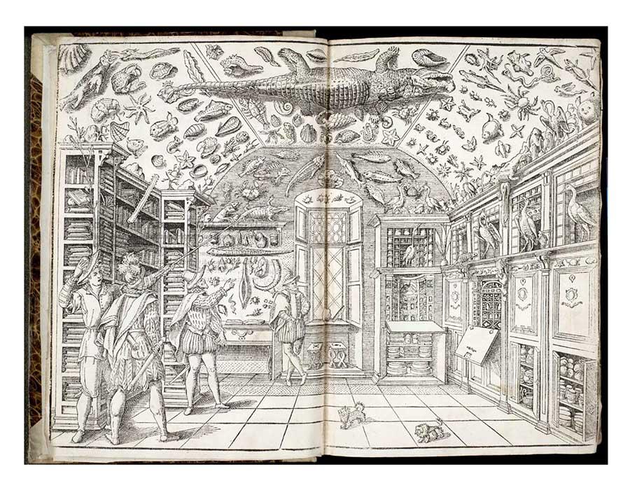 O gabinete de curiosidades e a origem dos museus.