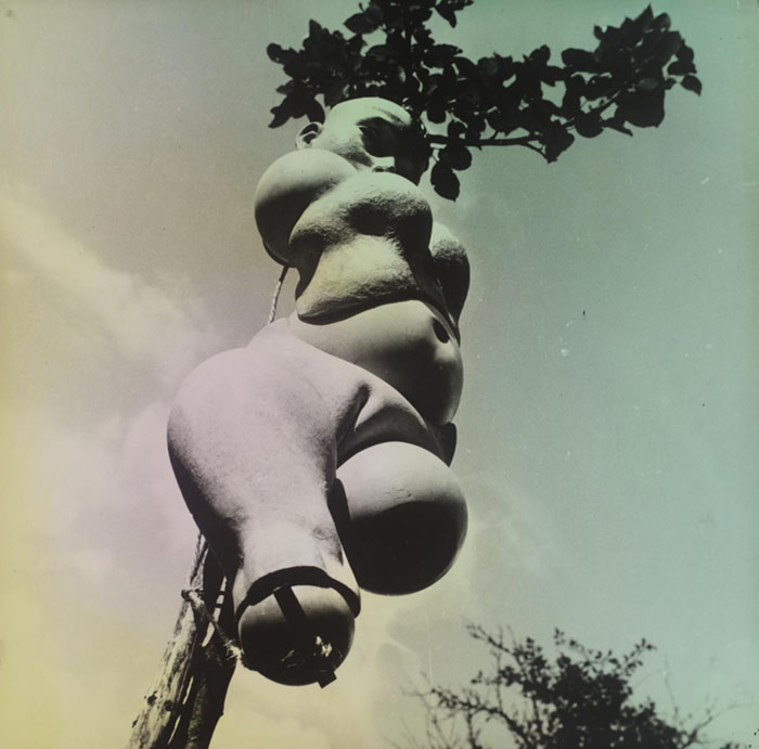 Hans Bellmer - The Doll (1936)   Tate Modern