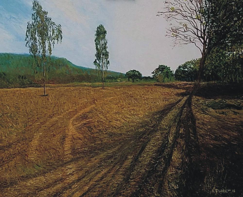 Sávio Floret. João Pinheiro - MG - OST 54X65 cm - R$ 10.800,00