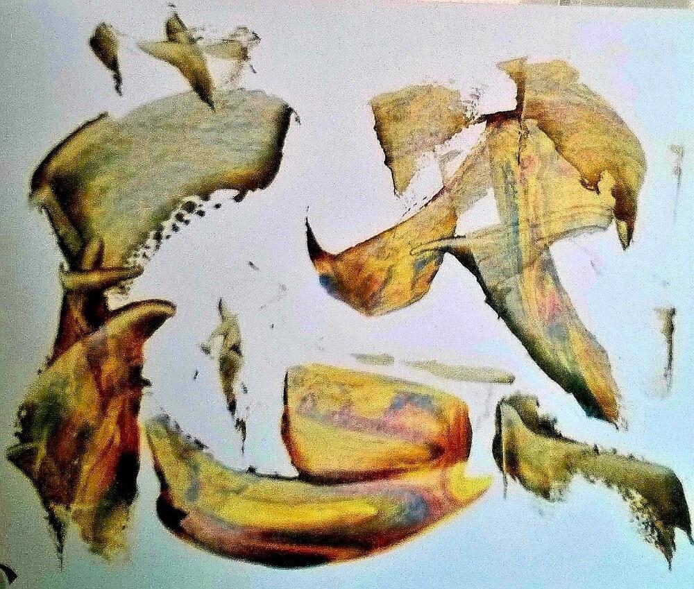 Vincenzo Giorgi - Duocolor