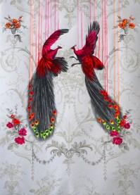 Louise McNaught, Wild Beauty