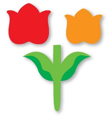 Molde de flor eva