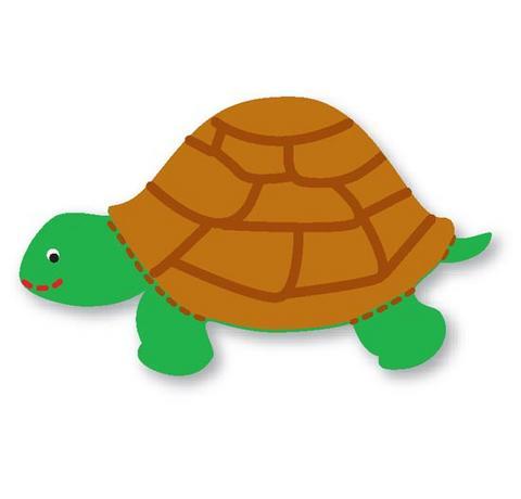 molde de eva tartaruga