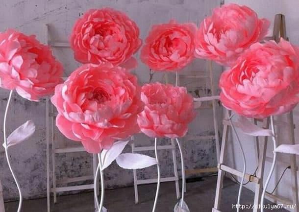 flor-gigante-de-papel-peonias