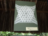 ... spread hexagons tessellation...