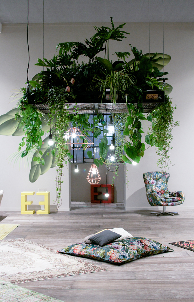 The perfect way to hang indoor plants on Hanging Plant Pots Indoor  id=34426