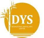 DYS_logo_orange