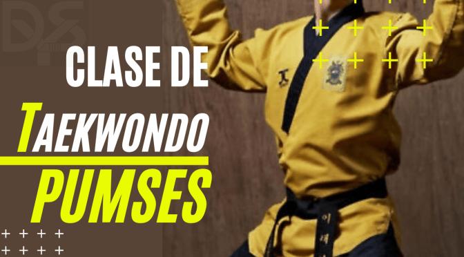 APRENDE Y REPASA LOS 8 PUMSES BÁSICOS DEL TAEKWONDO