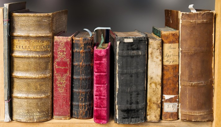 Imagem de livros em uma prateleira.