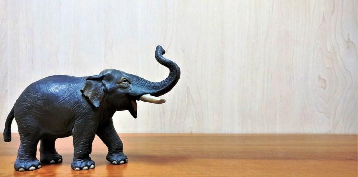 elefante sobre uma mesa