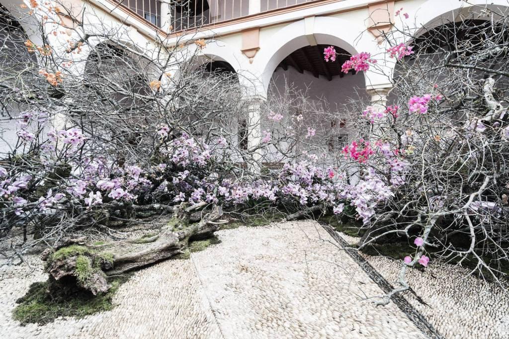 Arte floral. La magia de las flores y sus protagonistas.