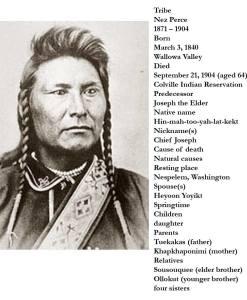 """Carved Door - """"Chief Joseph"""" Hin-mah-too-yah-lat-kekt - 3016HC"""