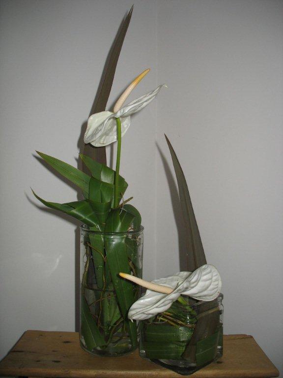 Anniversaire Art Floral Land Art Jardin Education L