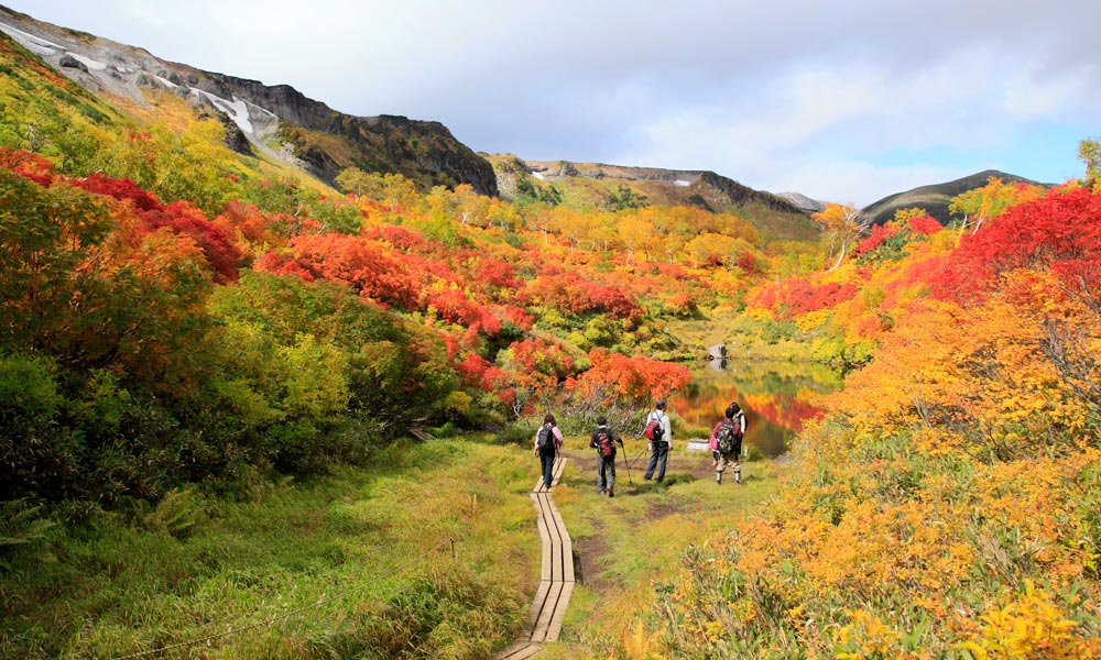3 Spot Hiking Terbaik Di Jepang Versi Artforia