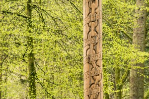 A wooden post in a forest with carvings of a chain and some text.