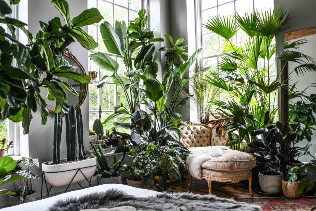 Artful Living | Andersen Windows On Talent