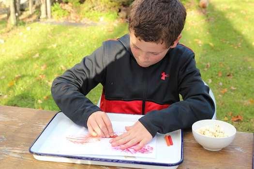 Boy making leaf rubbings on paper