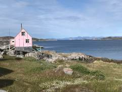 The pink house photo