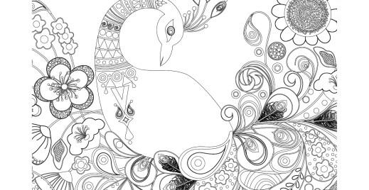 Coloriage gratuit, plumes de paon