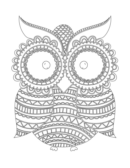 Imprimer coloriage hibou Nuit blanche