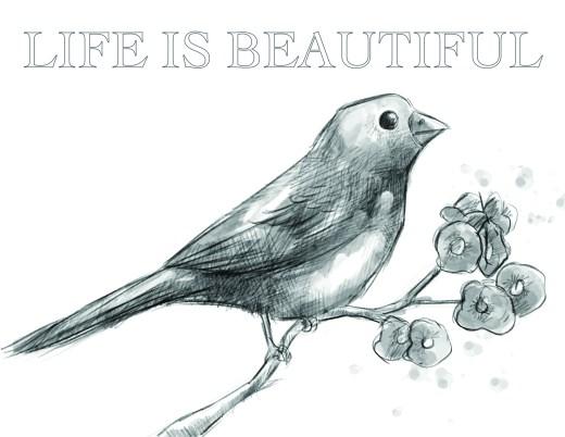 Coloriage grayscale oiseau merveilleuse vie
