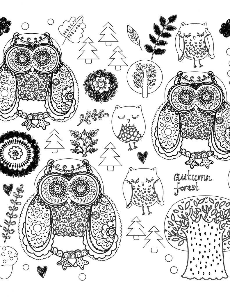 Image hibou gratuite à imprimer et colorier