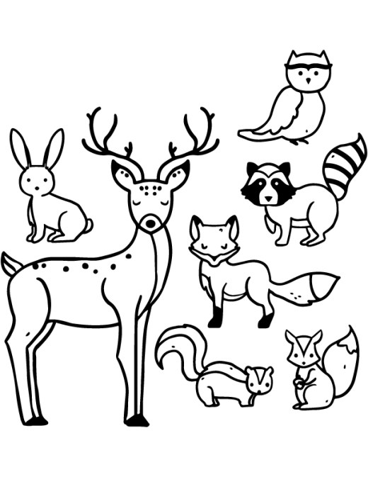 Dessin des animaux sauvages archives - Dessin animaux sauvages ...