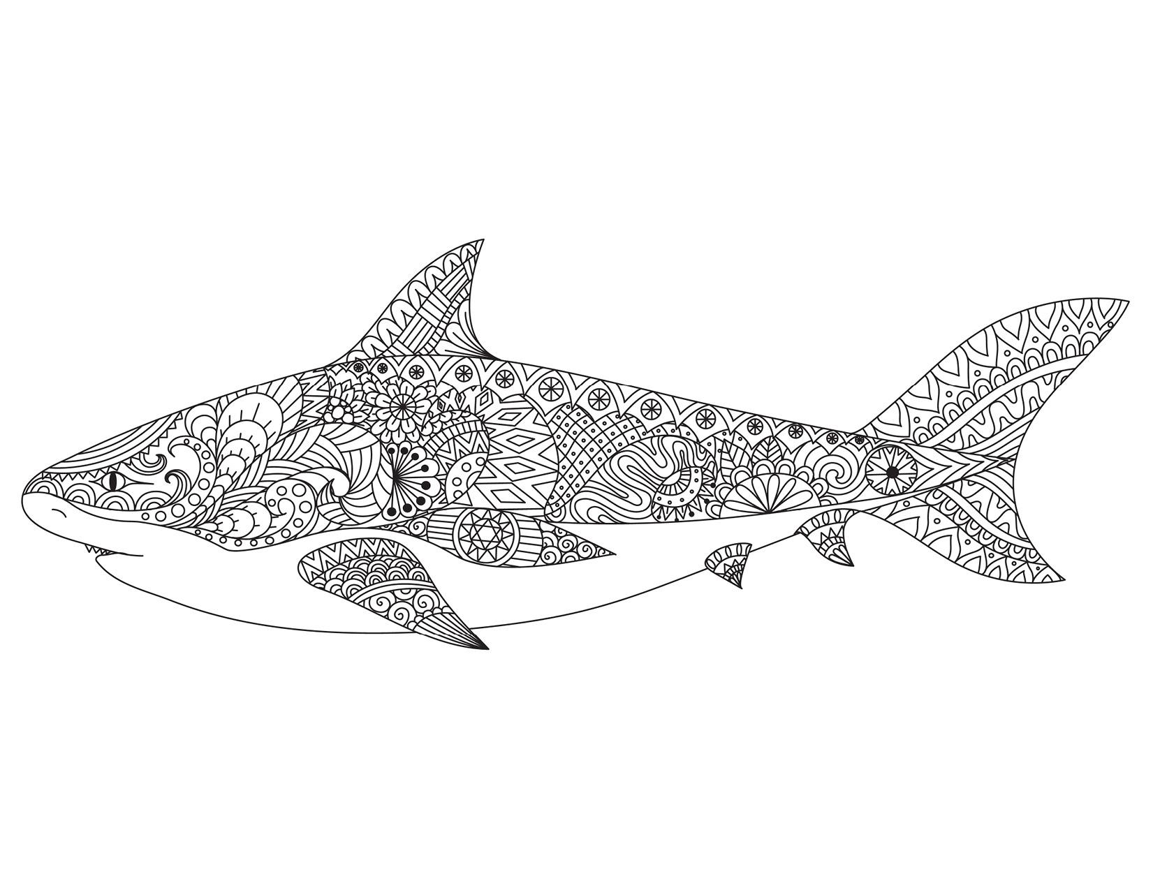 Beau Dessin De Requin A Colorier Et A Imprimer