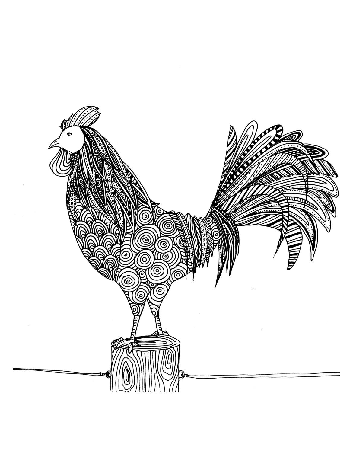 Coloriage de coq à dessiner par Chocobo - Artherapie.ca
