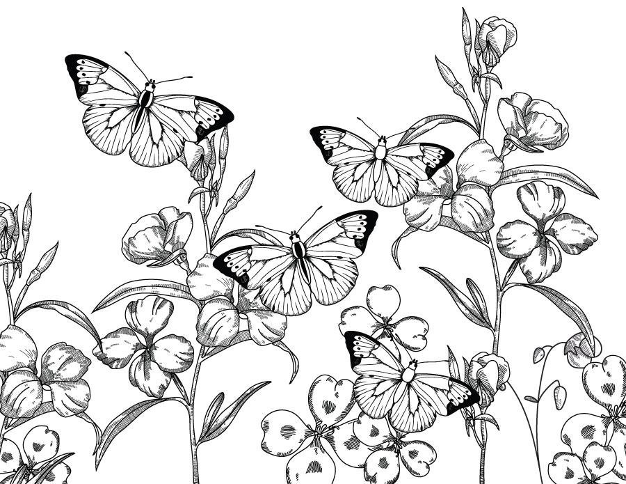 Paysage Nature Papillons A Imprimer Et Colorier Artherapie Ca