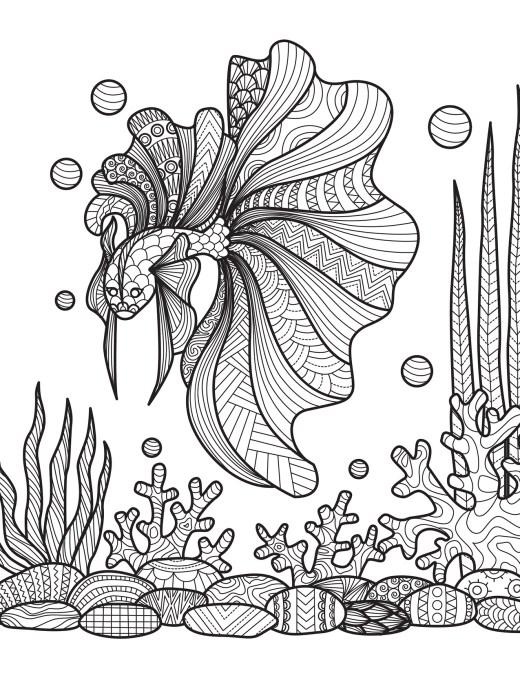 Coloriage de poisson dans la nature à imprimer