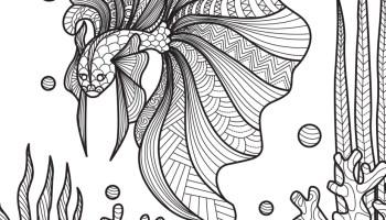 Poissons Dessin Pour Colorier A Imprimer Artherapie Ca
