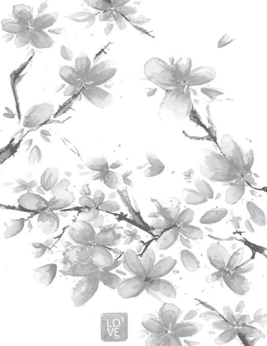Fleurs de sakura page grayscale gratuite pour adulte